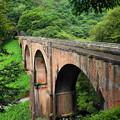 200921_24R_リュウ君・めがね橋にて・RX10M3(碓井峠) (9)