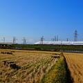 191216_L04_富士山と田んぼ・S18200 (25)