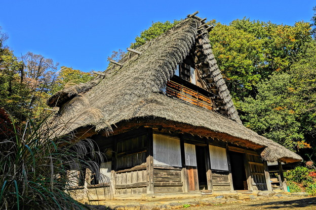 201126_01K_古民家の様子・RX10M3(日本民家園) (315)