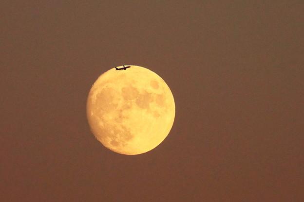 210919_54T_十三夜の月・RX10M3(鶴見川) (11)