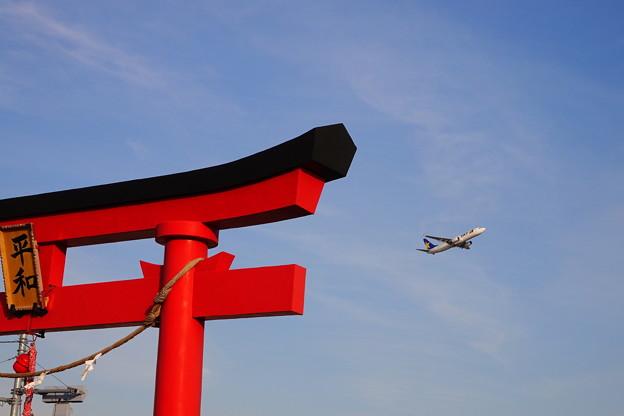 200207_52J_旅客機・RX10M3(六郷川) (24)