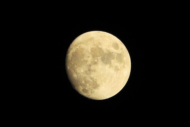 211018_51T_後の月・十三夜・RX10M3(近隣) (24)