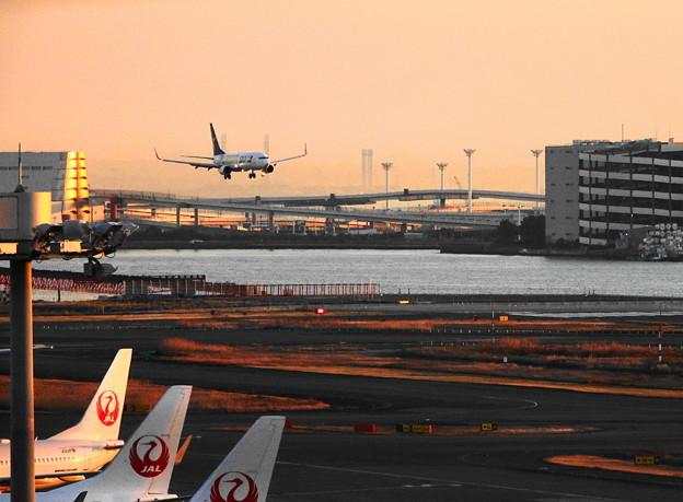 200120_51H_展望デッキからの眺め・RX10M3(羽田空港) (503)