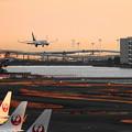 Photos: 200120_51H_展望デッキからの眺め・RX10M3(羽田空港) (503)