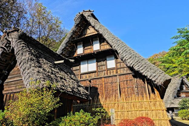 201126_01K_古民家の様子・RX10M3(日本民家園) (323)