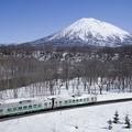 ローカル列車と春の羊蹄山