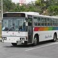 Photos: 琉球バス交通 日野ブルーリボン 沖縄22き・481