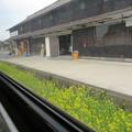 菜の花の駅