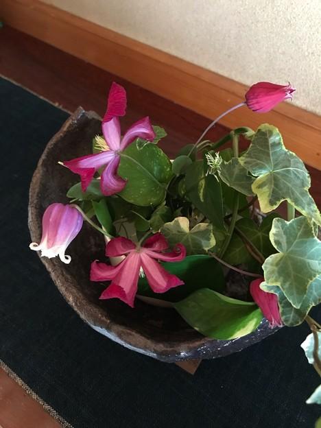 Photos: 花遊び
