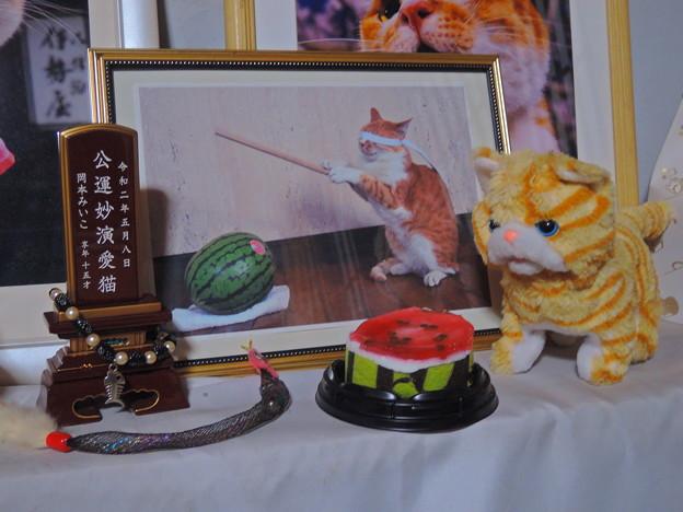 Photos: 月命日