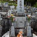 Photos: お彼岸のお墓参り