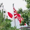 Photos: 旭日旗と国旗