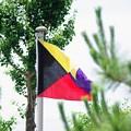 Photos: 国際信号旗