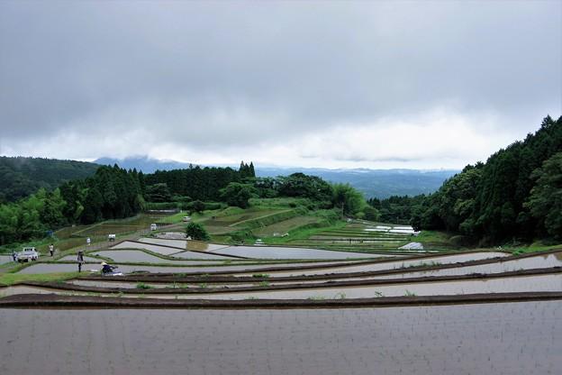雨上がりの棚田