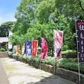 竹屋神社 a