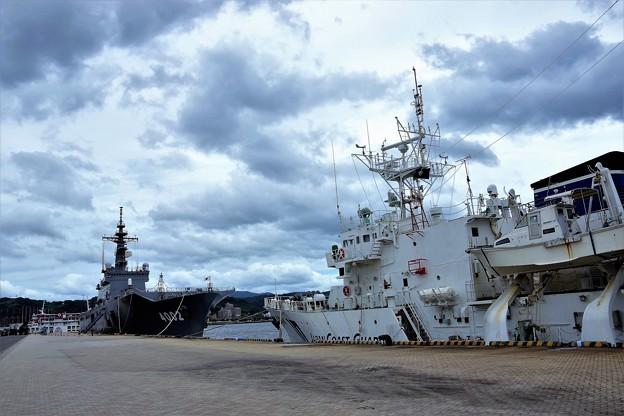 輸送艦と巡視船