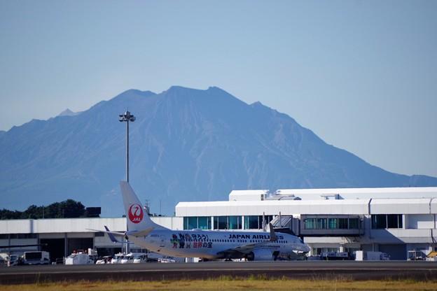 東京から鹿児島へ