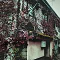 Photos: 昭和浪漫、浮世小路