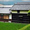 Photos: 静かな農家
