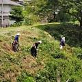 草刈り作業(2)
