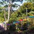 杉村公園(1)