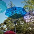 杉村公園(2)