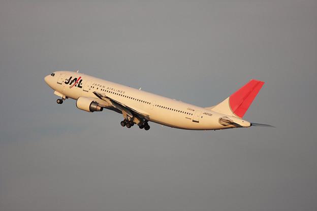 Photos: A300B4-622R JA012D JAL 2010.10