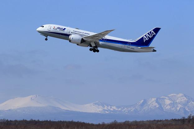 Boeing 787 JA818A takeoff