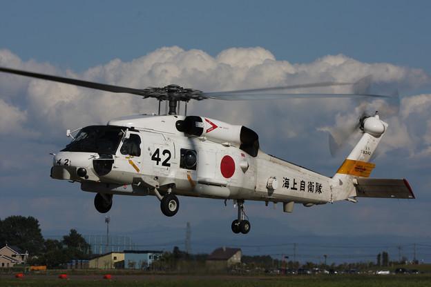 SH-60J 8242 HS-25 大湊 2008