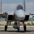 F-15J 8879 203sq 2008