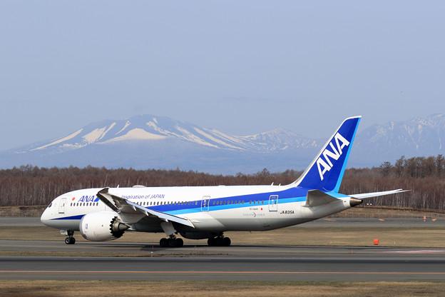 Boeing 787-8 JA835A ANAとAirJapan共用機