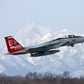 Photos: F-15J 8861 201sq 20th Annv'SP 2006 (2)