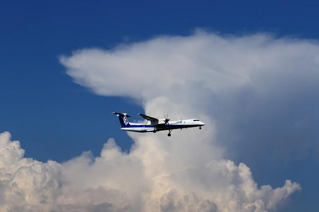 Q400 ANA Wings 夏の雲 ?