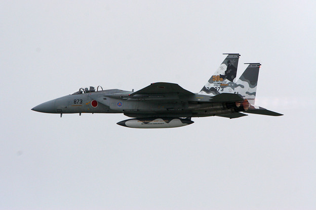 F-15J 8873 50thAnniversory ChitoseAFB 2007 (1)