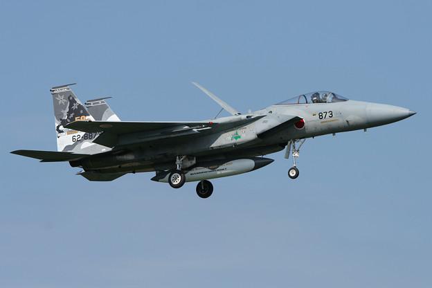 F-15J 8873 50thAnniversory ChitoseAFB 2007 (2)