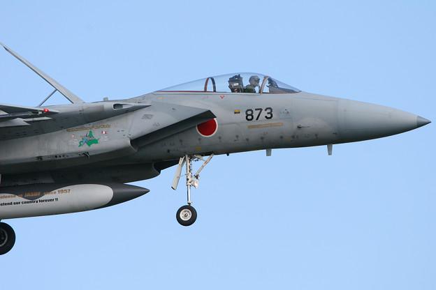 F-15J 8873 50thAnniversory ChitoseAFB 2007 (3)