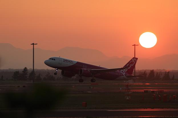 A320neo JA204P Peachと夕陽