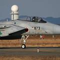 F-15J 8873 50thAnv ChitoseAFB 2007 (2)