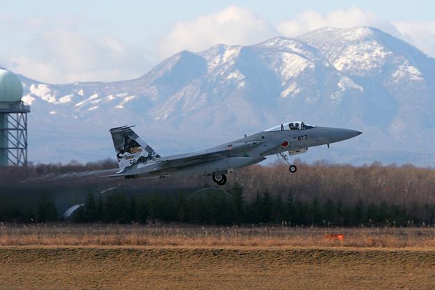 F-15J 8873 50thAnv ChitoseAFB 2007 (3)
