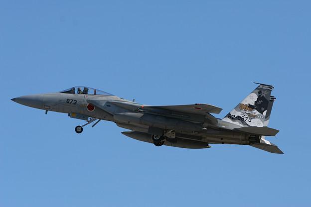F-15J 8873 50thAnv ChitoseAFB 2007 (4)