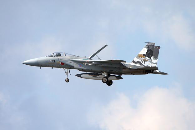 F-15J 8873 50thAnv ChitoseAFB 2007 (5)