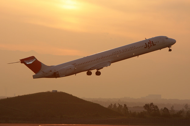 MD-90 JA8069 JAL CTS 2008