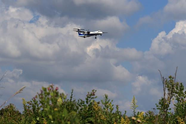 秋めく野と Q400