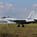 Photos: F-15DJ 8071 201sq
