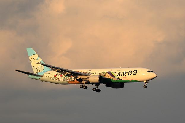 Boeing767 ベア・ドゥ北海道JET JA602A 夕陽を浴びて