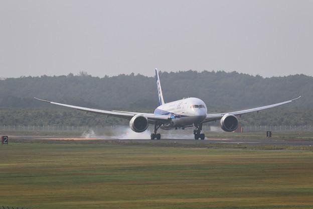 Boeing787 ANA 朝もやの中touchdown