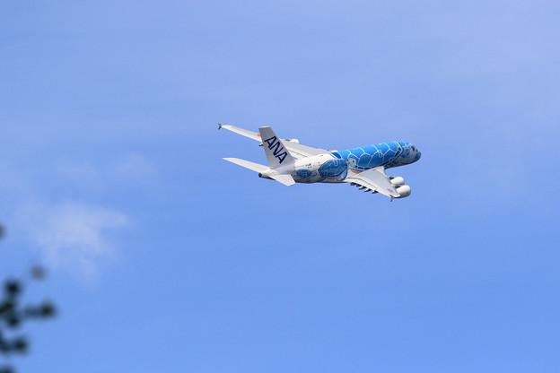 A380 ANA JA381A takeoff 3