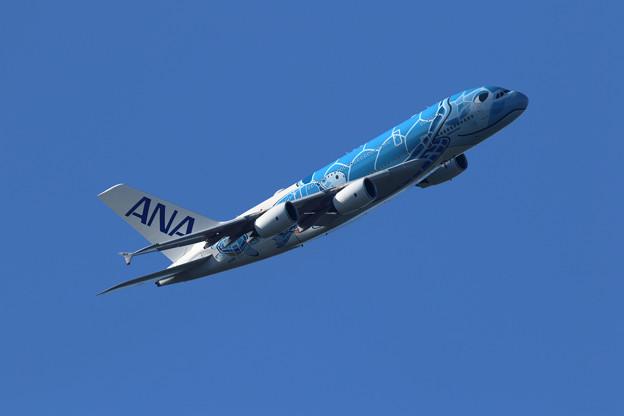 A380 ANA JA381A takeoff 4