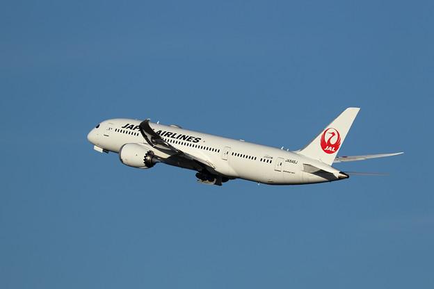 Boeing 787 JA846J JAL takeoff