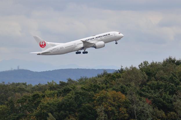 Boeing 787 JA848J JAL takeoff